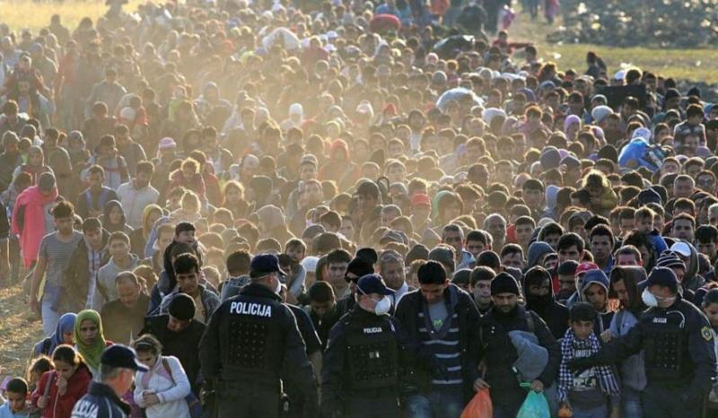 2506103 692 refugies arrivent en croatie afp 1446034639 1600 800x466p